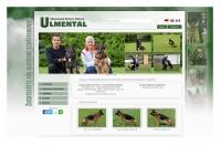 Ulmental.com
